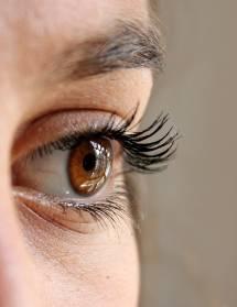 Journée de dépistage de la vue