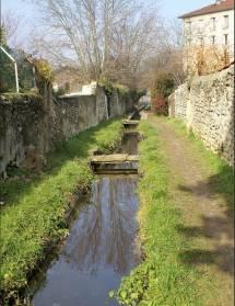 Balade au fil de l'eau : canal de la Martinette