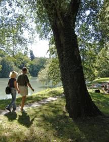 Pizançon, la Vanelle : deux barrages sur l'Isère